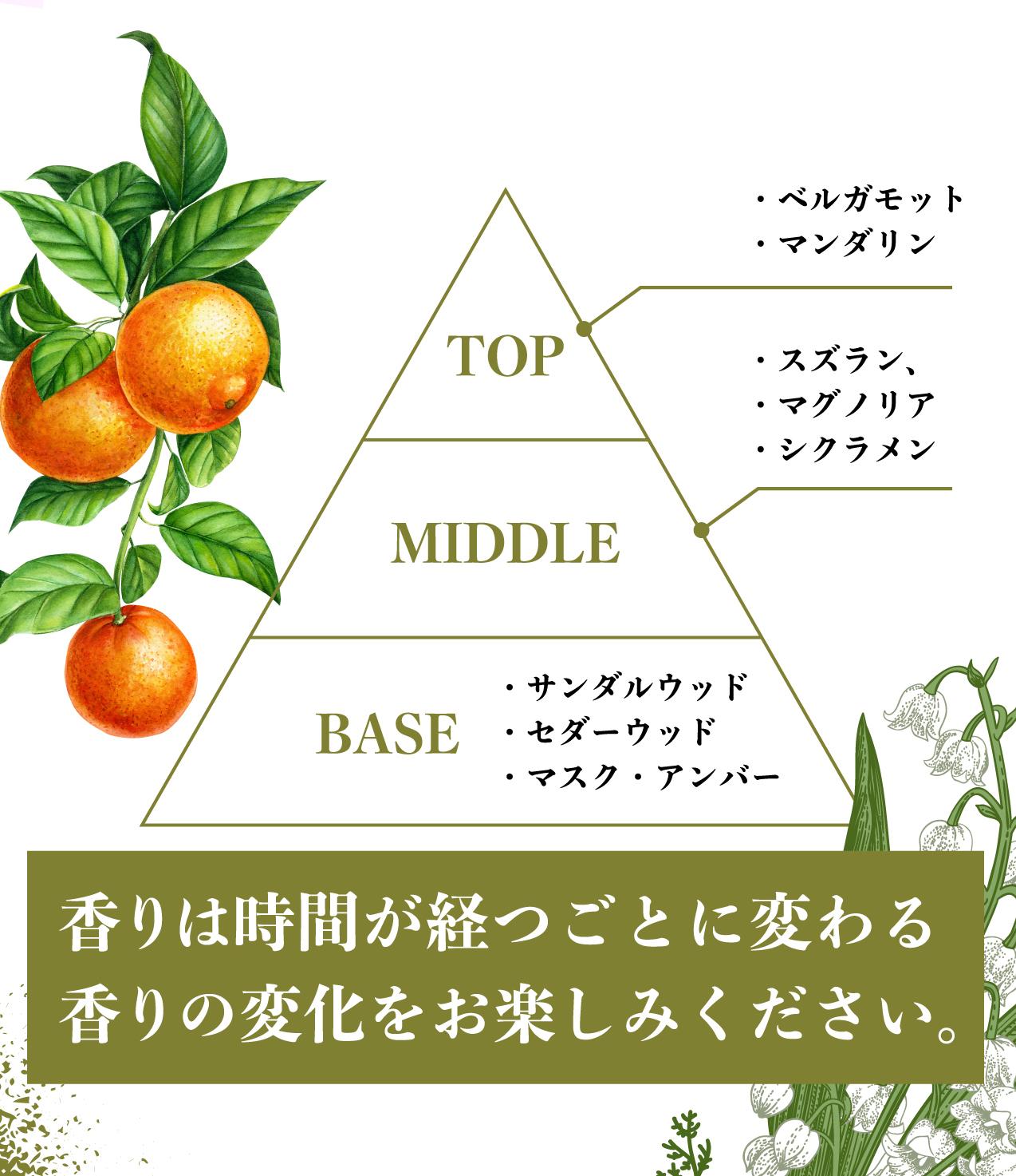 パトロン J.S.B. 髪 シャンプー