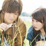 映画『植物図鑑』DVD予約方法!特典や最安値など調査!レンタル日も決定!
